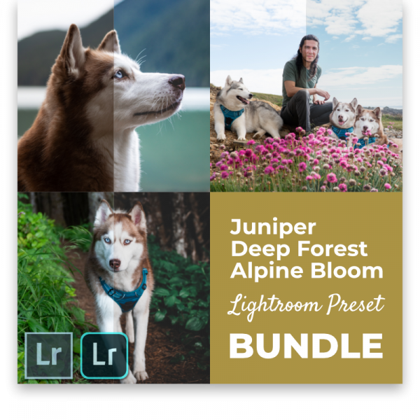 Lightroom Preset Bundle Husky Squad