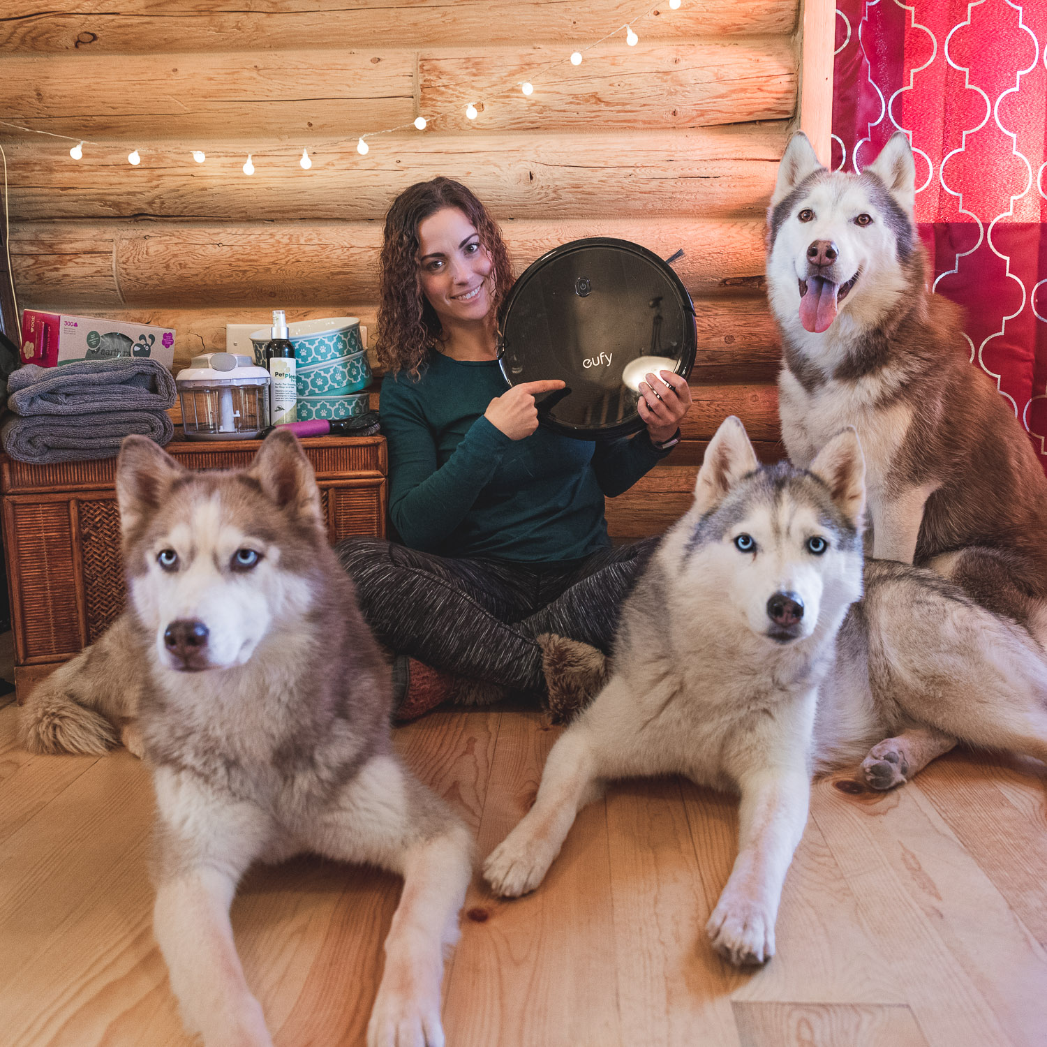 dog home products with husky squad